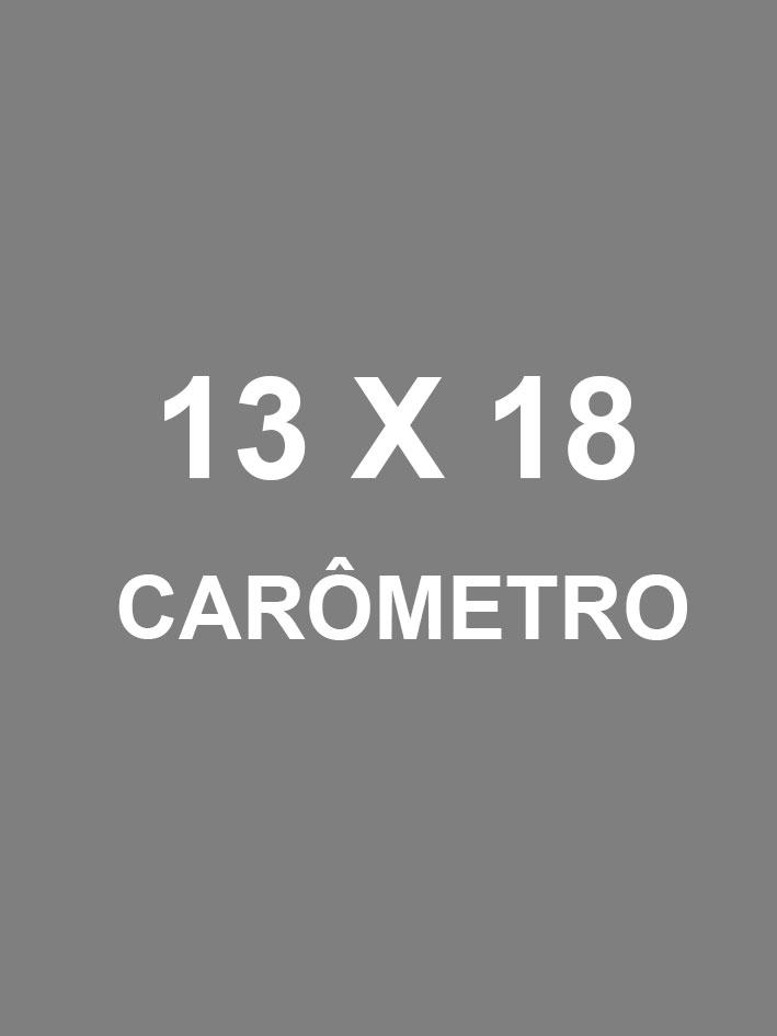 13X18CARO